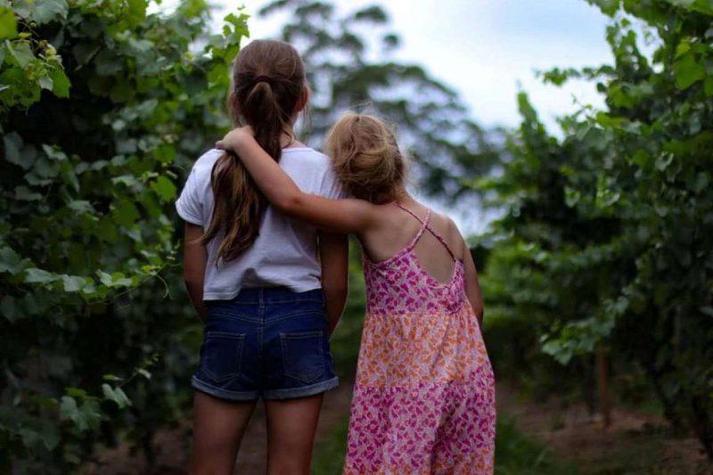 Estimular empatia nas crianças gera sociedade mais respeitosa